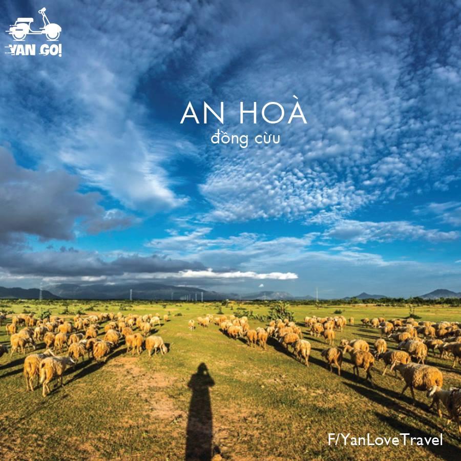 Top 5 địa điểm cắm trại đẹp quên lối về ở Ninh Thuận
