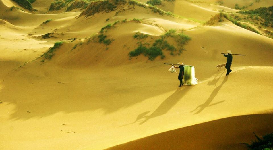 """Cảnh tuyệt đẹp trong phim """"tôi thấy hoa vàng trên cỏ xanh"""""""