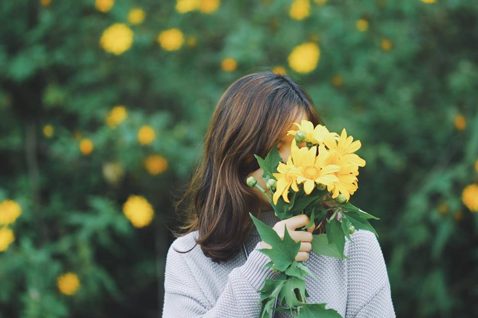 Mơ về Đà Lạt - Thiên Đường Mùa Hoa Dã Quỳ