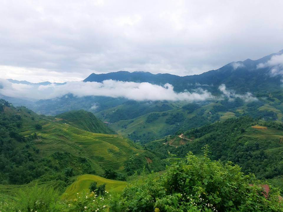 Review - Check in Sapa - Hà Nội - Ninh Bình 7 ngày 6 đêm 4 người