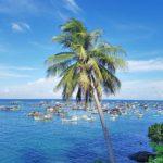 Địa Điểm Du Lịch: Hòn Sơn Rái – Xứ Sở Của Những Cây Dừa Cô Đơn