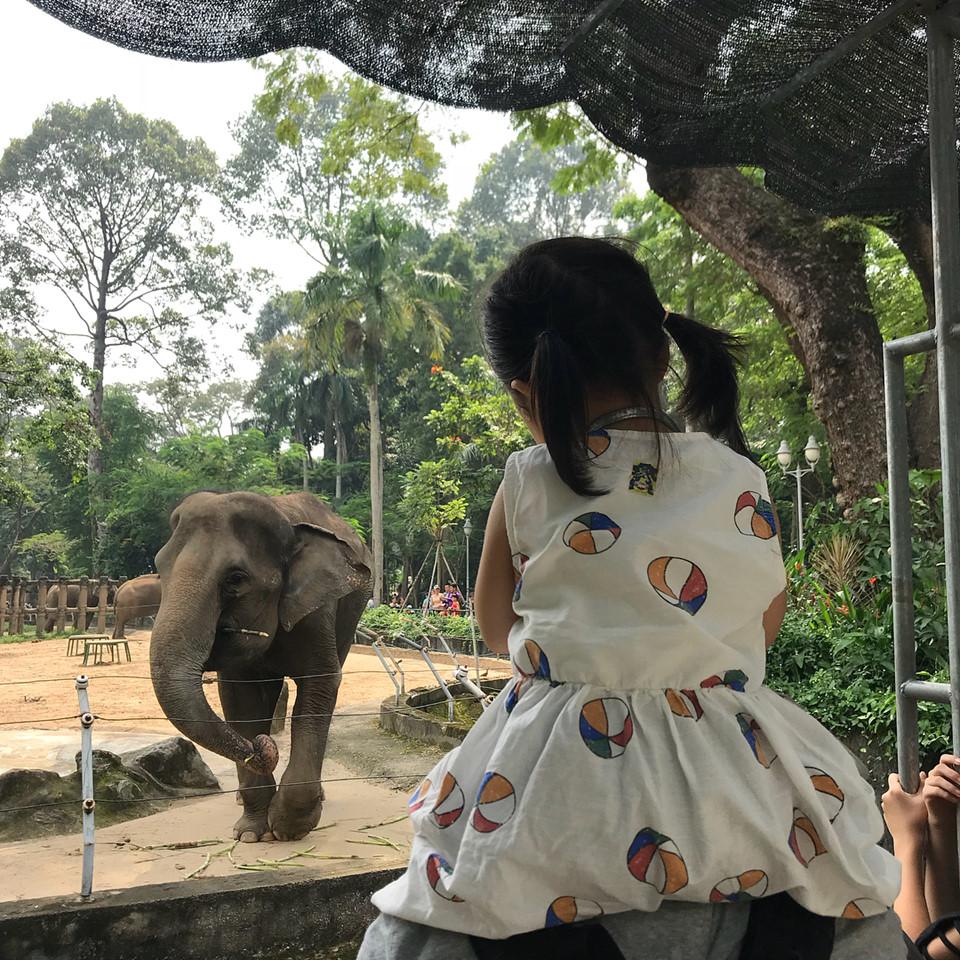 4 điểm ma mị đủ để sống áo, rong chơi khám phá cuối tuần ở Sài Gòn